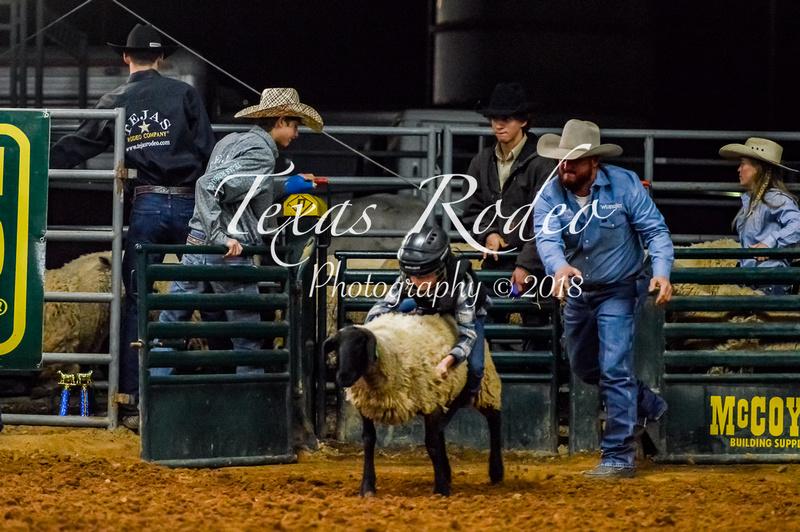 Texas Rodeo Photography Nov 24 2018 Tejas Rodeo